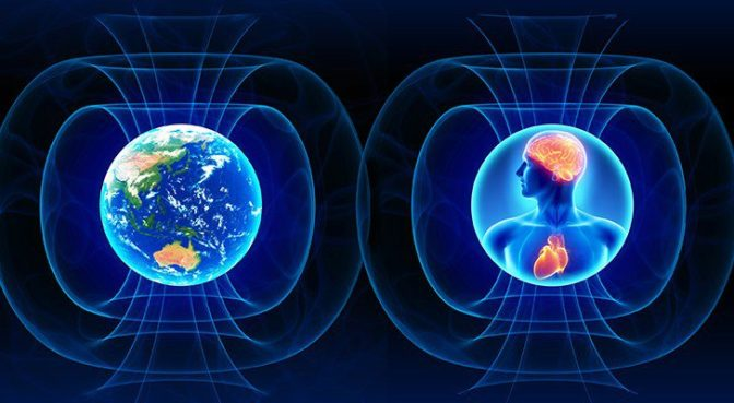 Earth, Human and their magnetic fields